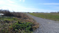 Tract #2 Benson Pike Shelbyville KY, 40065