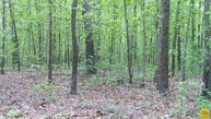 7.3 Acres  Talley Bend Hwy C Deepwater MO, 64740