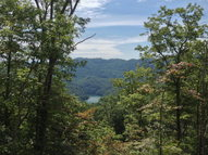 Lot 29 Flint Ridge 29 Bryson City NC, 28713