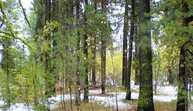 203 Pintail Place Donnelly ID, 83615