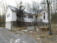 2609 Birch Hollow Effort PA, 18330
