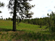 Lot 5 Van Dorn Drive New Meadows ID, 83654