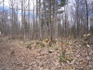 40 Acres  Old Grade Rd Newberry MI, 49868