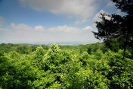 0 Sharp Springs Rd Lot 1 Winchester TN, 37398