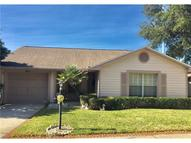 864 Franklin Circle Palm Harbor FL, 34683