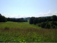 Lot 6 Smith Hollow Rd Greeneville TN, 37743