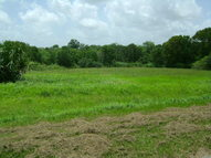 0 Lot 31 River Hollow Way Blessing TX, 77419