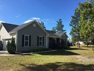 216 Brians Woods Road Maple Hill NC, 28454