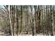 Lot 341 Bergrucken Lane Stamford VT, 05352