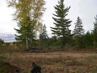Tbd Off Ford Rd Michigamme MI, 49861