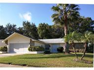 3128 Brunswick Circle Palm Harbor FL, 34684