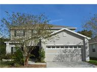 11158 Creek Haven Dr Riverview FL, 33569