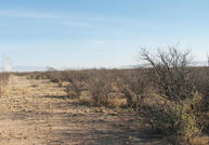 Dragoon Rd And Highway 191 Cochise AZ, 85606