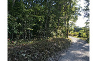 Old Ridge Rd Lt 6 Lot 6 Mineral Bluff GA, 30559