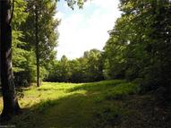 Tbd Pisgah Forest Drive Lot 10, Section B Pisgah Forest NC, 28768