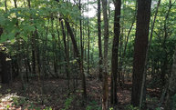 Lot 3 Packards View Rd Lot 3 Mineral Bluff GA, 30559