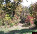 Lot 36 Oak Creek Drive Gepp AR, 72538