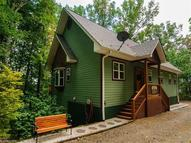 72 Wildflower Mountain Trail Candler NC, 28715