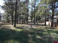 391 Bastille Pagosa Springs CO, 81147