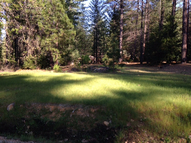 1772 The Point Lot 307 Meadow Vista CA, 95722
