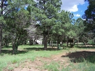 130 Bean Patch Rd Nogal NM, 88341