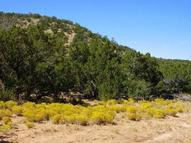 2729 Jumano Trail Mountainair NM, 87036