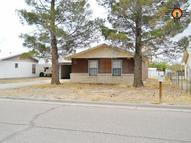 408 Coleman Truth Or Consequences NM, 87901