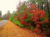 Lot 21 Loblolly Lane S 21 Mill Spring NC, 28756