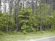 Lot 5 Providence Road Forest City NC, 28043