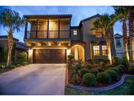 20311 Heritage Point Drive Tampa FL, 33647