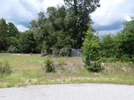 00 Lots 21-36 Townsite Of Tuckaho Lot Inglis FL, 34449