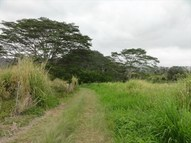 Wood Valley Rd Lot #: A-9 Pahala HI, 96777