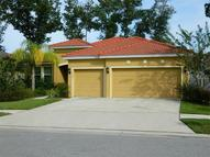 3006 Maple Shade Place Seffner FL, 33584