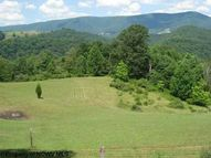 Lot 21 Jenningston Red Creek WV, 26289