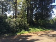 221st Pl Long Beach WA, 98631
