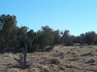 Lot 317 Woodland Valley Ranch Cr N6287 Saint Johns AZ, 85936