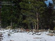 0 Eva Rd Lot 328 Idaho Springs CO, 80452