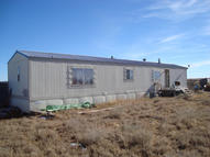 29 Percheron Moriarty NM, 87035