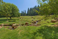 29698 Wengler Hill Rd Shingletown CA, 96088
