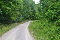 Lot 12 Wilson Ridge Road Wilder TN, 38589