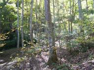 725 Jess Cove Road Clyde NC, 28721