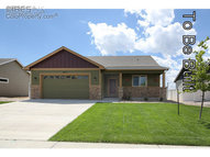 3892 Mount Flora St Wellington CO, 80549