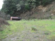1344 S. Calapooia St. Sutherlin OR, 97479