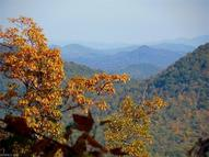 0000 Catawba Falls Parkway 206 Black Mountain NC, 28711