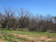 Lot 2 Rick Road Buffalo Gap TX, 79508