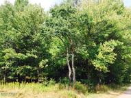 Lot 10 Ripple Ln Beach Lake PA, 18405