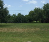 Lot 3&6 Palm Blvd Laguna Vista TX, 78578