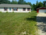 12650 South Meadow Ln Grant MI, 49327