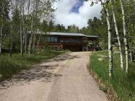 25073 Little Italy Road Custer SD, 57730