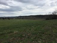 Lot 20 Smelcer Rd Mohawk TN, 37810